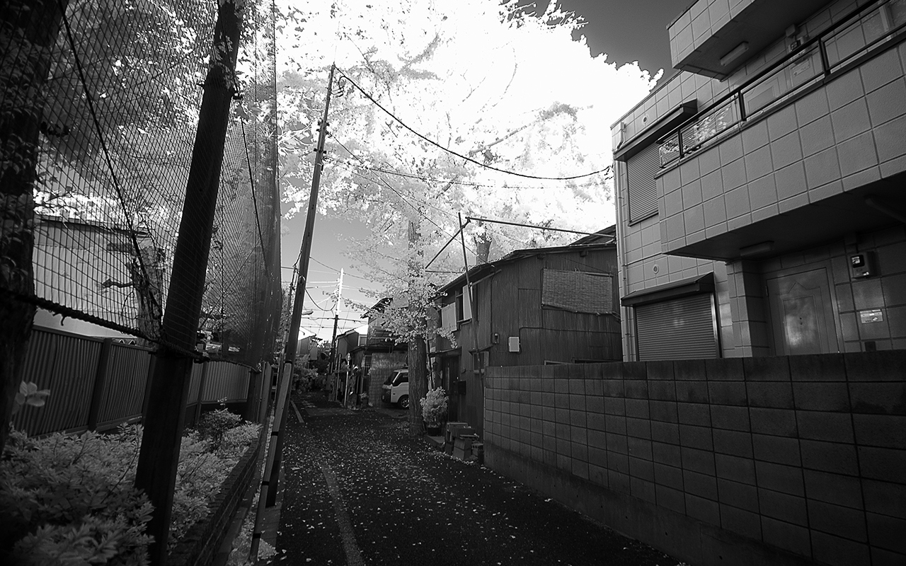 Tokyo Infrared picture