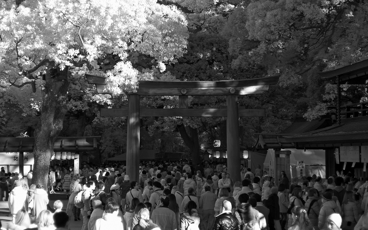 Tokyo Infrared II picture