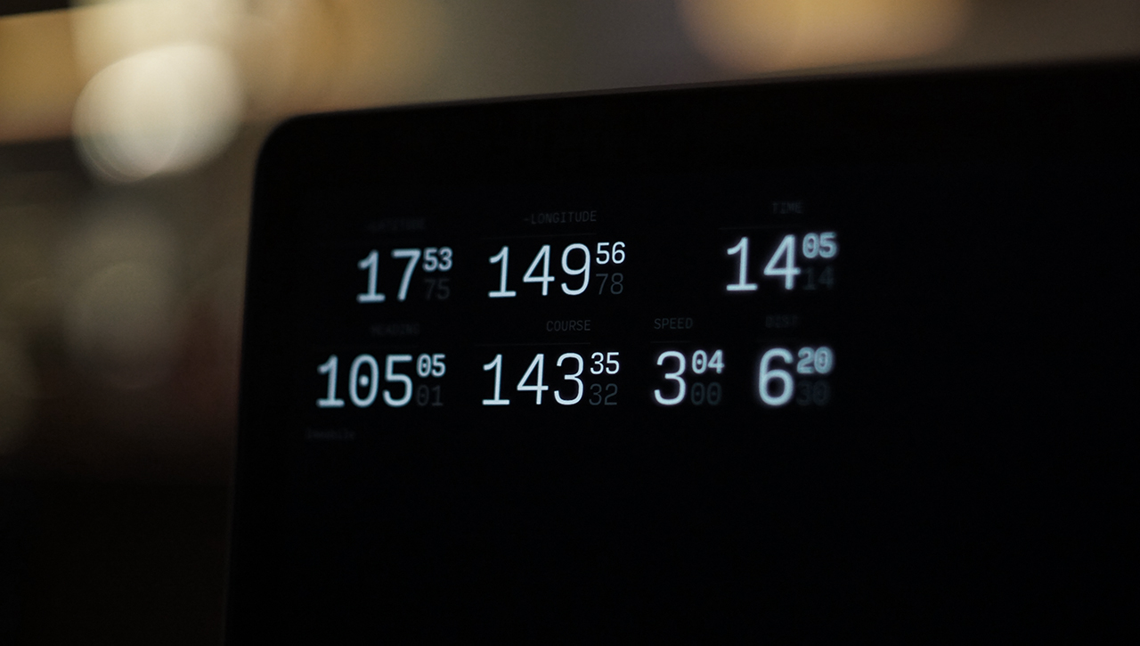 Monitor View picture
